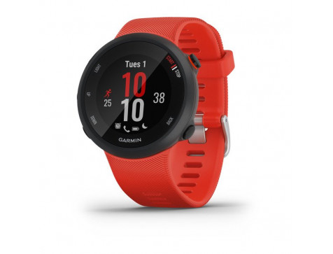 Беговые часы Garmin Forerunner 45 GPS Large EU Lava Red (010-02156-16)